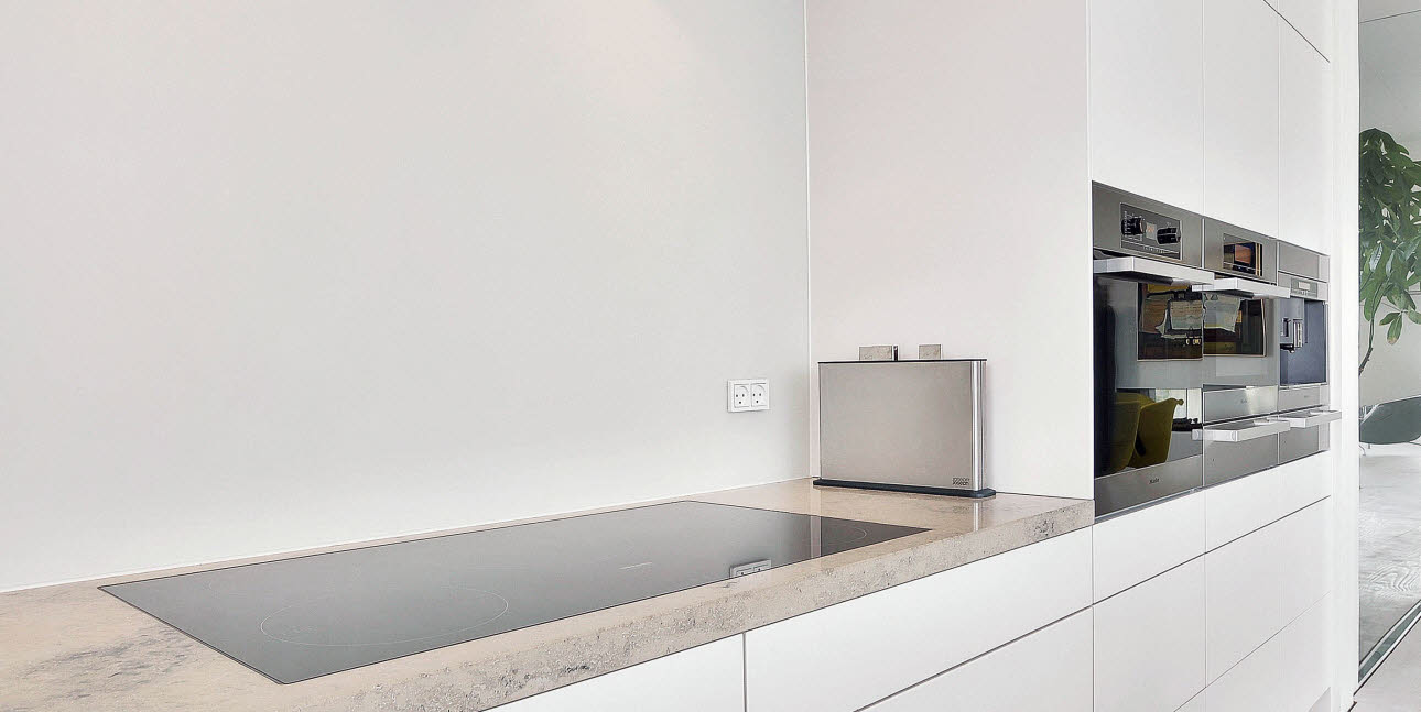Functionalist kitchen